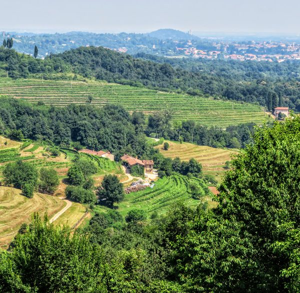 Lombardy wine country Montevecchia