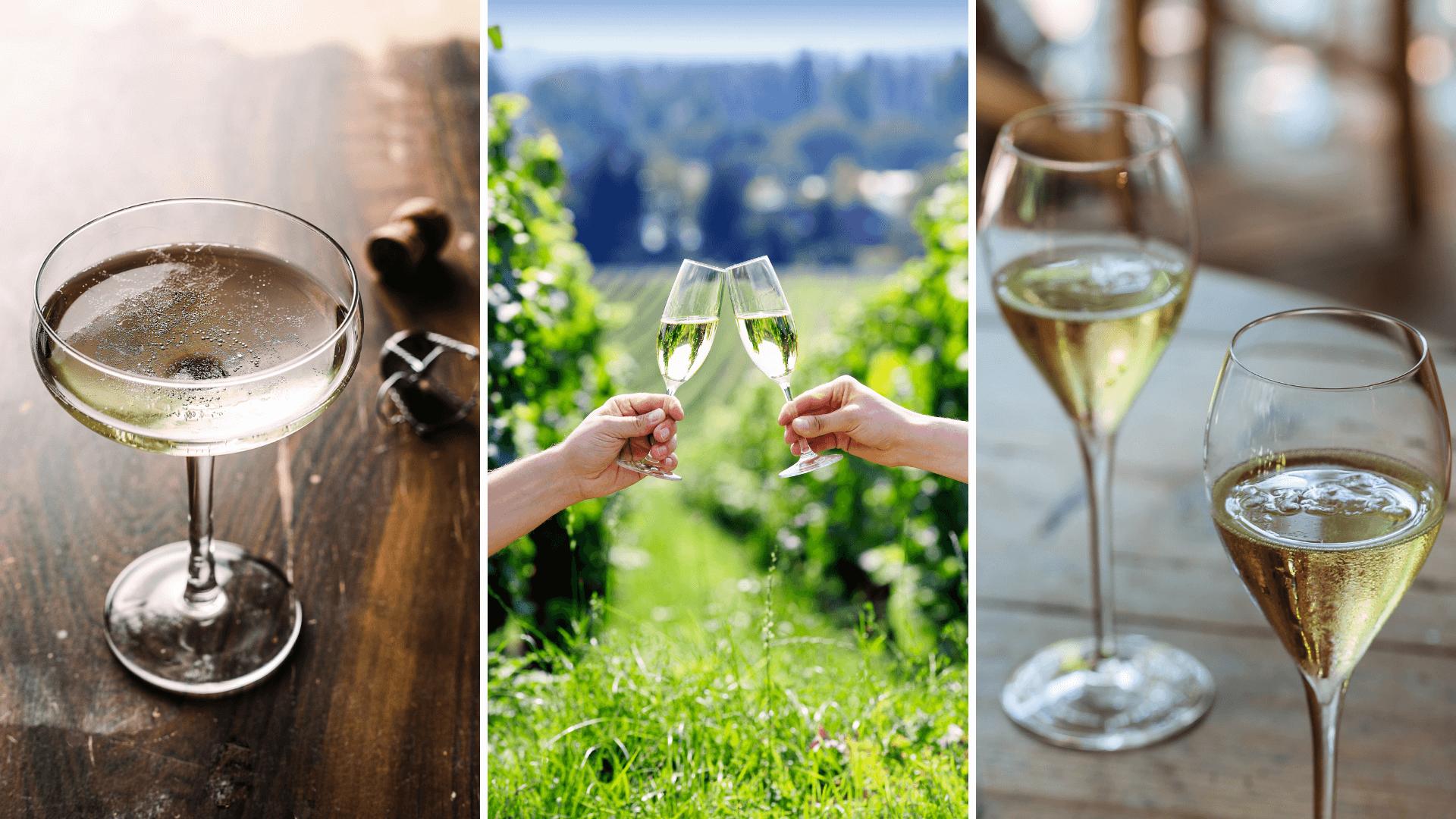 Prosecco or Franciacorta wine?